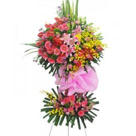 Hoa Chúc Mừng - HCM 8006